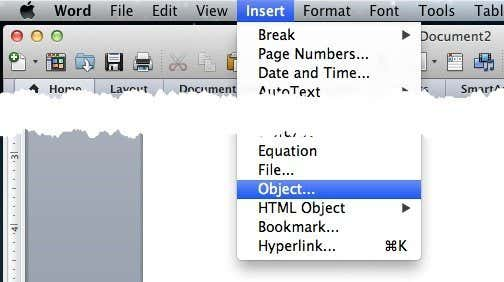 Insert Pdf Into Word Document