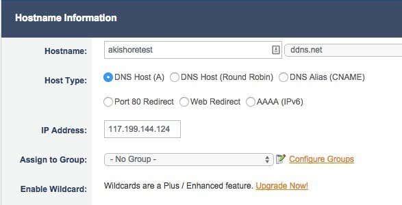 add a host noip
