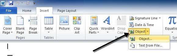 insert object word