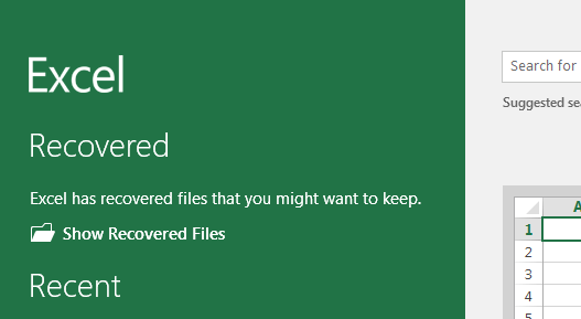 show recovered files