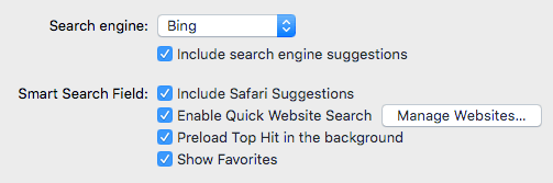 safari search options
