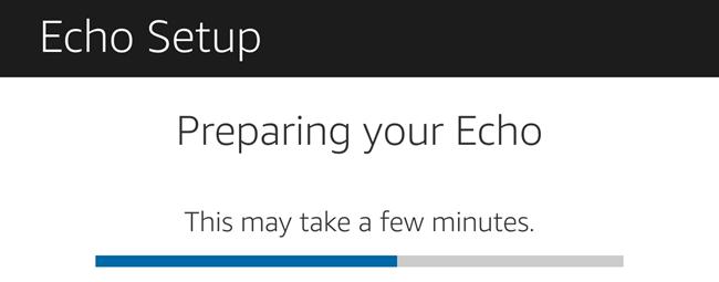 preparing echo
