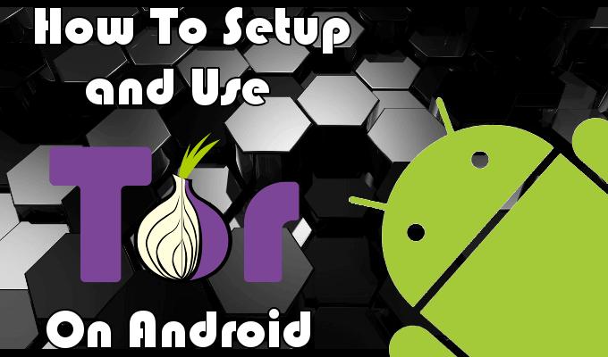 torr server android apk