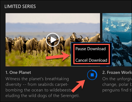How To Download Shows and Movies From Netflix